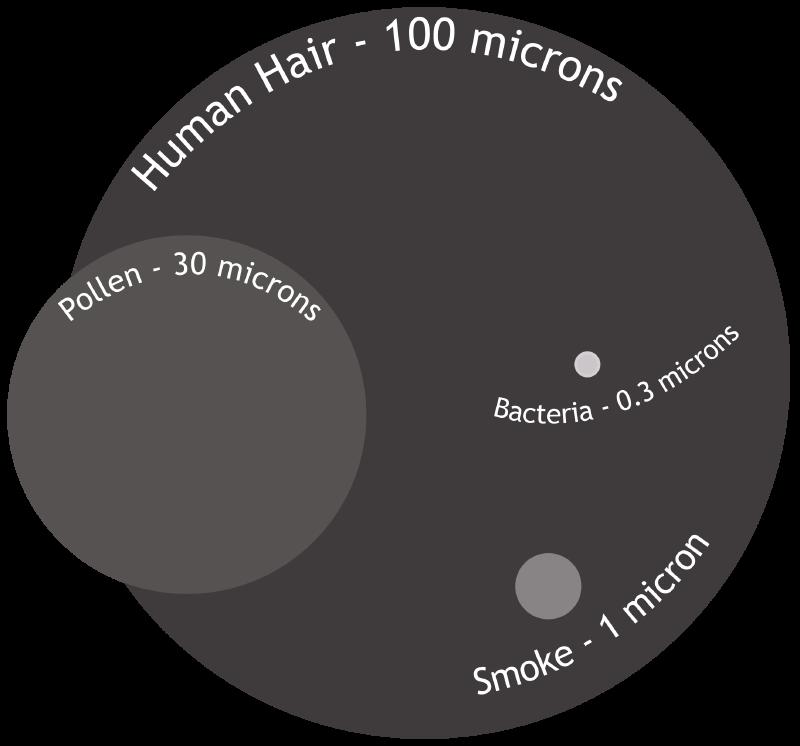 Hoe groot is een micron